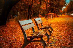 Un autunno deludente